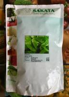 Семена шпината Аполло F1, Sakata, 50000 шт