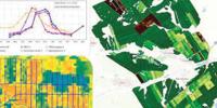 Услуги исследования и аналитики поля дронами