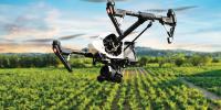 Мониторинг полей дронами