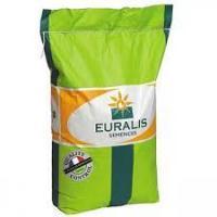 Семена подсолнечника ЕС Белла, Евралис