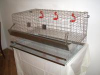Клетки для кур несушек 6-8 шт.