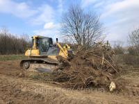 Корчування дерев, садів, пнів бульдозером