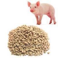 СК свиньи №2 вес. (20)