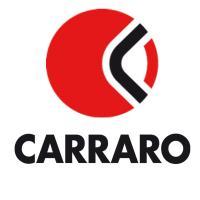 Ремонт КПП, трансмиссии Carraro, ZL40/50