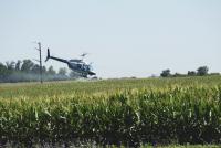 Авиахимобработка кукурузы - защита посевов от вредителей авиацией