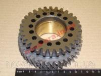Шестерня Д-240 (МТЗ) топливного насоса (Украина) 240-1006312-В