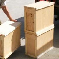 Породистые пчелы