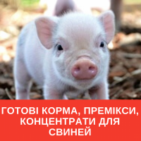 Готовые корма, премиксы, концентраты для свиней