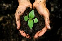 Агрохимический анализ почвы