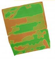 Создание карт. Облет полей дроном