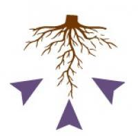 Универсальный антистресант и восстановитель плодородия почвы Fertigum