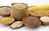 Услуги по очистке, сортировке, протравливании, фасовке зерна, бобовых и масличных культур