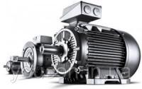 Промышленные электродвигатели асинхронные, трехфазные, с короткозамкнутым ротором (исполнение 1081)