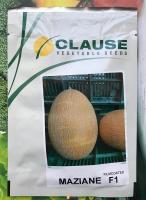 Семена дыни Мазин F1 (Маф 35 F1), Clause, 1000 шт