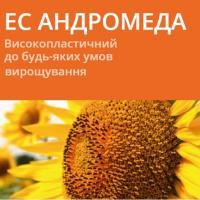 Семена подсолнечника ЕС АНДРОМЕДА / ES ANDROMEDA (A-G+)