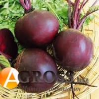 Семена свеклы столовой Кардиал F1, Sakata, 50000 шт
