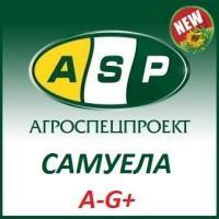 Семена подсолнечника САМУЭЛА (A-G+)