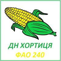 Семена кукурузы ДН ХОРТИЦЯ