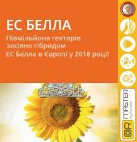 Семена подсолнечника ЕС БЕЛЛА / ES BELLA (A-G+)