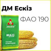 Раннеспелый гибрид кукурузы ДМ Эскиз (ФАО 190)