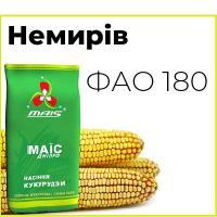 Раннеспелый гибрид кукурузы Немиров (ФАО 180)
