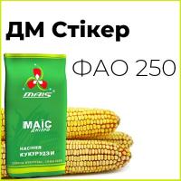 Среднеранний гибрид кукурузи ДМС Стикер (ФАО 250)