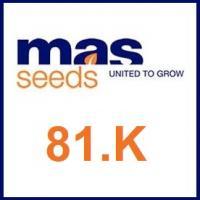 Семена подсолнечника MAS 81. K / МАС 81.К Маисадур Семанс (Maisadour Semences)