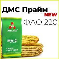 Среднеранний гибрид кукурузи ДМС Прайм (ФАО 220)