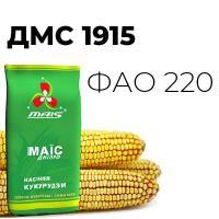 Раннеспелый гибрид кукурузы ДМС 1915 (ФАО 220)
