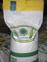 Семена кукурузы ДН Хортица (ФАО 240), Урожай 2020