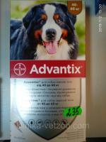 Адвантикс (капли на холку от блох, клещей, мух, комаров для собак весом от 40 до 60 кг) 1 пип.