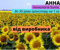 Семена подсолнечника гибрид Анна F1