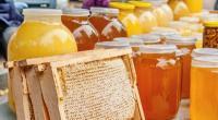 Мед с лесной пасеки