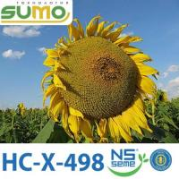 НС Х 498 7 рас 2020р Стандарт