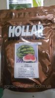 Семена арбуза АУ-Продюсер, Hollar Seeds (500 г)