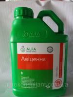 Авиценна, 5л - протравитель на 8-12 т (тебуконазол, 50 + прохлораз, 250 + крезоксим-метил, 50)