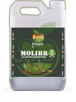 Magic MoliBron, Бор %10+0.5Mo 5л в форме хелатов Амино
