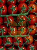 Семена чери томата Бейбито F1/ Beybito F1 BT TOHUM 250н