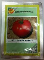 Семена томата BT 1019 F1, среднеранний, 500 семян BT TOHUM