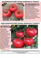 Babacan F1 БаБаджан F1 Новий гібрид червоного низькорослого томату 500 семян. BT TOHUM