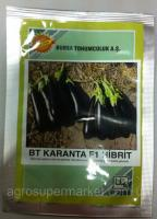 Семена баклажана BT Karanta F1, ультраранний, 500 семян BT TOHUM