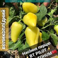 Семена перца сорта Полет - BT PILOT F1 Оригинал Bursa Tohum 50 г 20гр