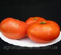 Семена томата Мирсини 1000 сем. Семинис