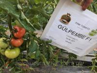 Семена розовый томат ГЮЛЬПЕМБЕ F1 (GULPEMBE F1) Супер ранний, MRTOHUM Турция