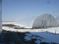 Теплицы фермерские под пленку 10 м