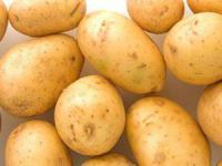 Картофель сорт Ривьера сверхранний 1 репродукция, 5 кг, сетка