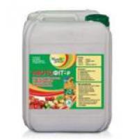 Биоактиватор Азотофит-р для подкормки растений