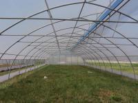 Теплицы фермеские промышленные пленочные шириной 10 метров