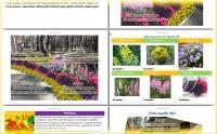 Транспортировка растений на участок